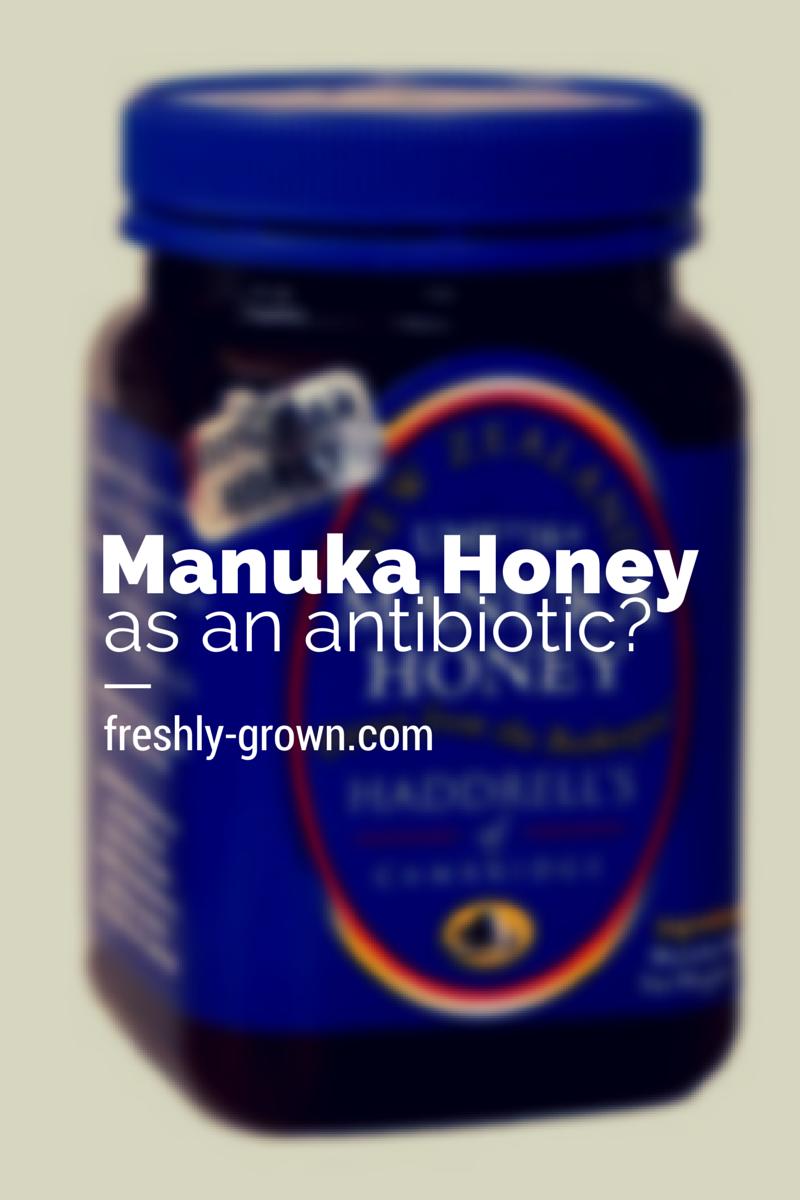 Why I Chose Manuka Honey Over Antibiotics To Support My 4 Year Old